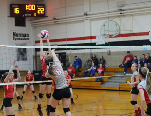 6 Tips for Volleyball Action Photography | Reader Question